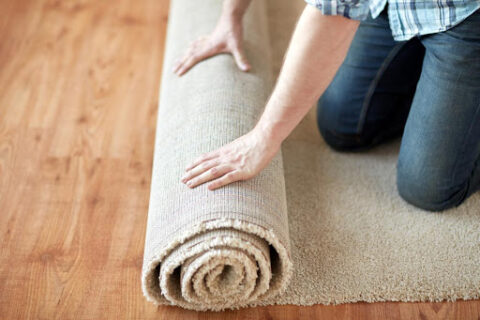 Protected: Area Rug Cleaning